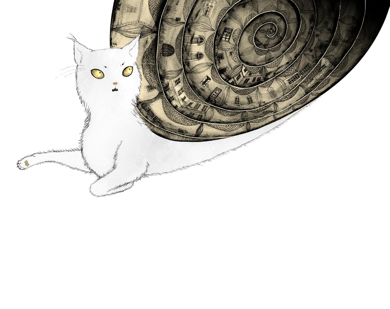 catparadise